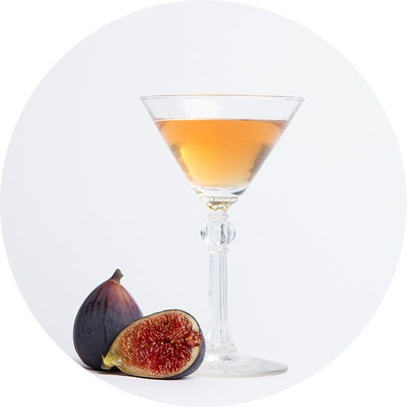 plv-ginger-fig